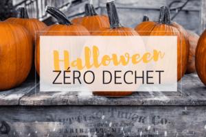 Bannière avec citrouilles et texte Halloween zéro déchets